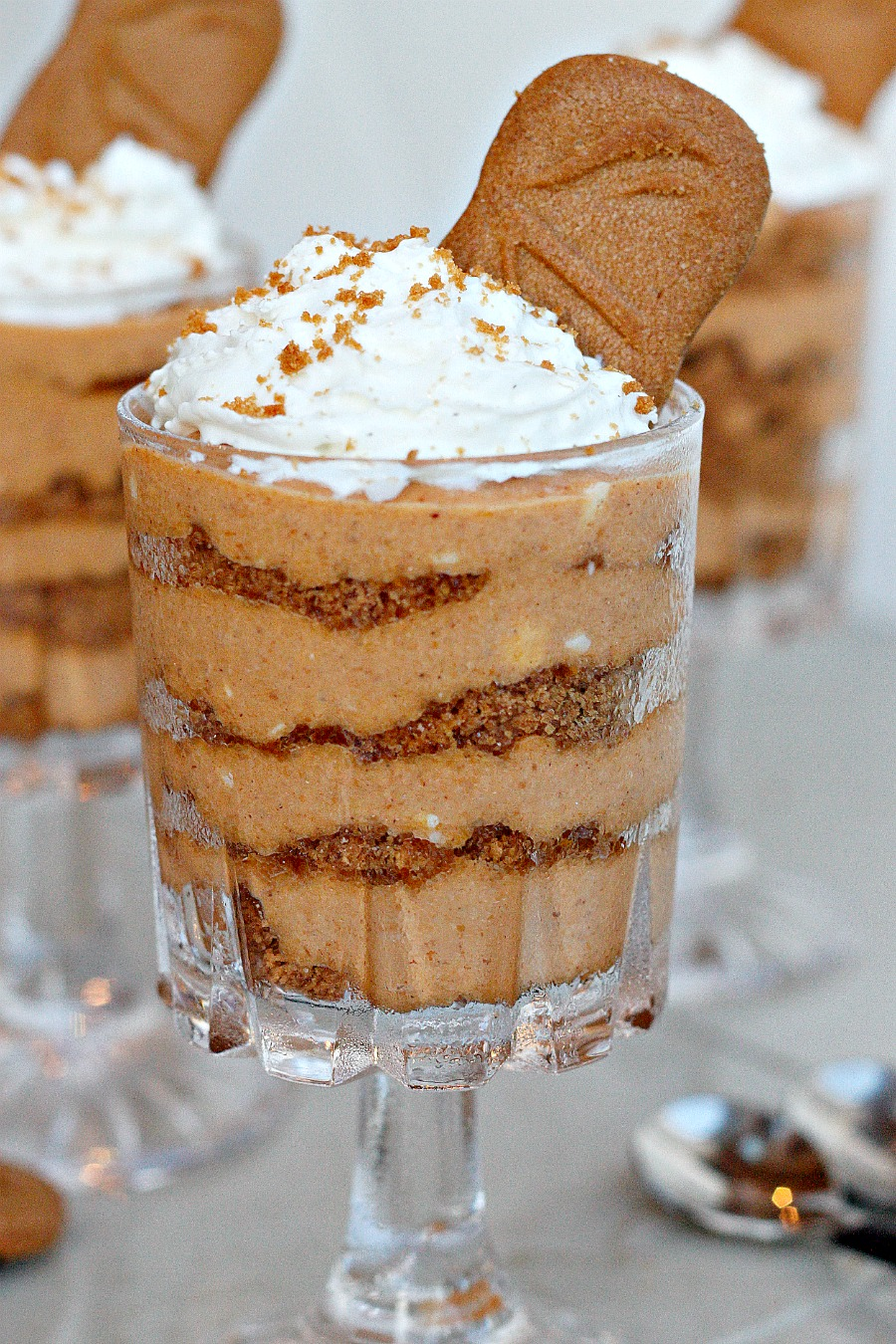 Easy and Fast No-Bake Pumpkin Cheesecake, layered with crushed Biscoff ...