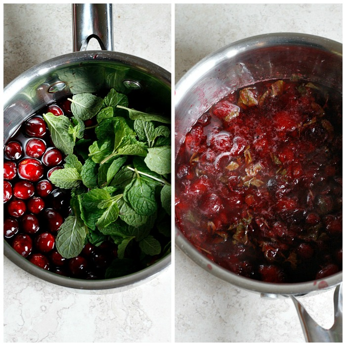 Pomegranate Cranberry Mint Julep | Fabtastic Eats