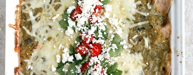 Three Cheese and Green Chile Chicken Enchiladas | Fabtastic Eats